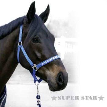 Kantar FP Super Star kantary-kantary, kantary