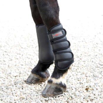 Ochraniacze treningowe TORONTO Covalliero ochraniacze-treningowe, ochraniacze-i-owijki, dla-konia