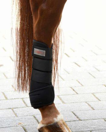ochraniace neoprenowe kontaktowe dla konia Covalliero, Kerbl, komplet przót tył