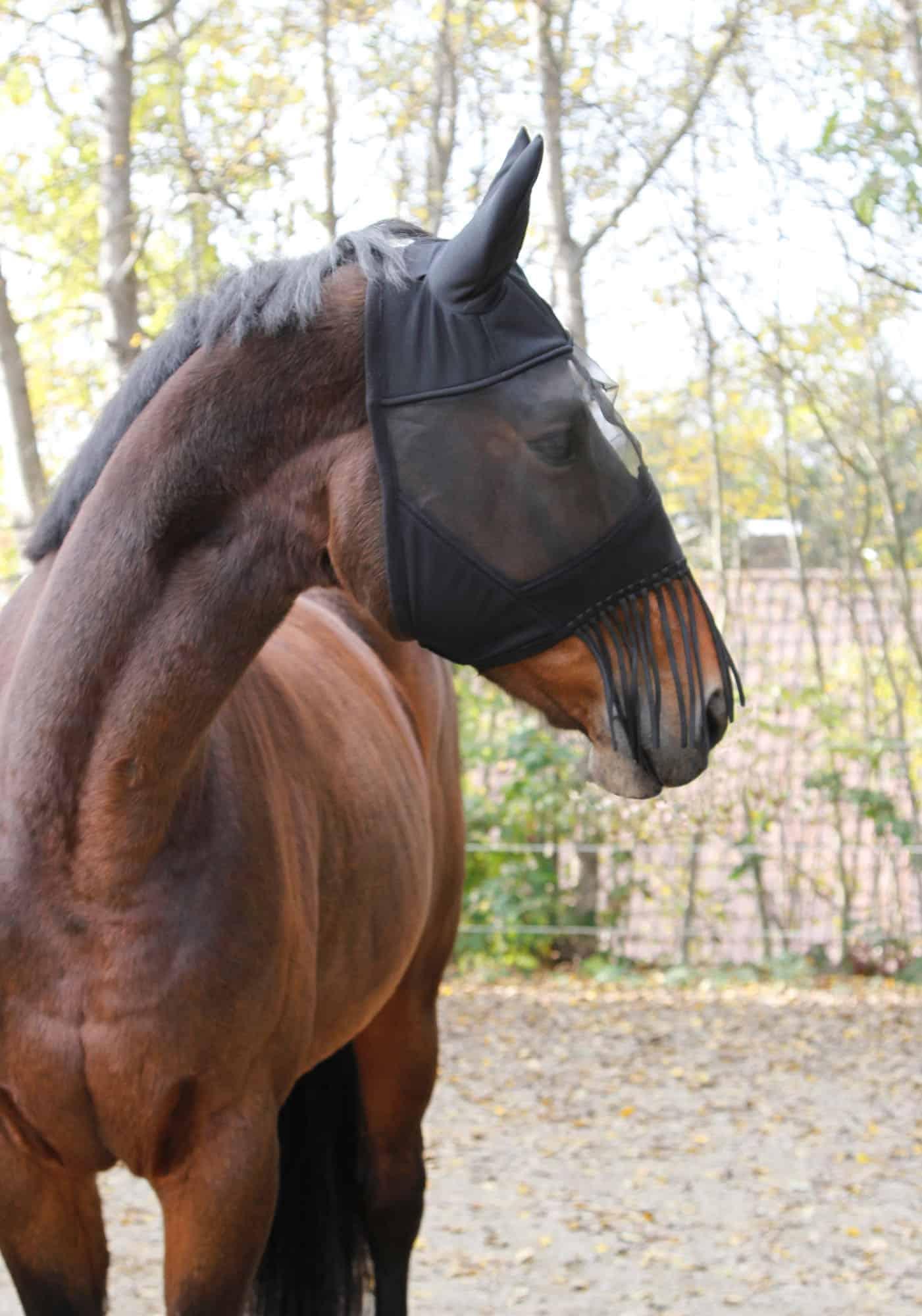 Maska dla konia chroniąca przed owadami Covalliero z frędzelkami
