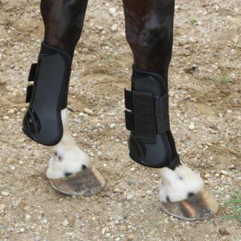 Zestaw ochraniaczy Kerbl ochraniacze-treningowe, ochraniacze-i-owijki, dla-konia
