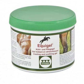 Equigel Stassek żel chłodząco-regenerujący preparaty-rozgrzewajace-i-chlodzace