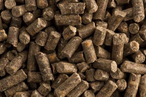 Calcium Sorbinum 10 kg StHippolyt PREPARAT Z WAPNIEM I WITAMINĄ C suplementy, pasze-i-witaminy