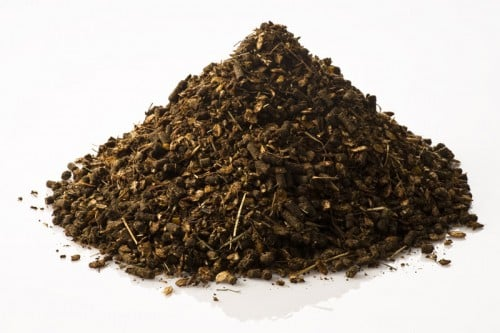 Musli dla konia Fohlengold Musli 20 kg StHippolyt pasze-i-witaminy, pasze