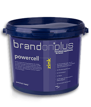 Brandon plus powercell Cynk 3 kg Medvetico SKUTECZNE UZUPEŁNIENIE NIEDOBORU CYNKU suplementy, pasze-i-witaminy