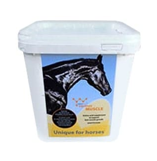 Yarrowia EQUINOX MUSCLE preparat drożdżowy dla koni suplementy, pasze-i-witaminy