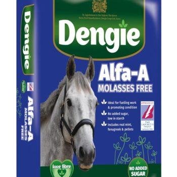 Sieczka Dengie ALFA-A Mollasses Free 20 kg pasze-i-witaminy, pasze