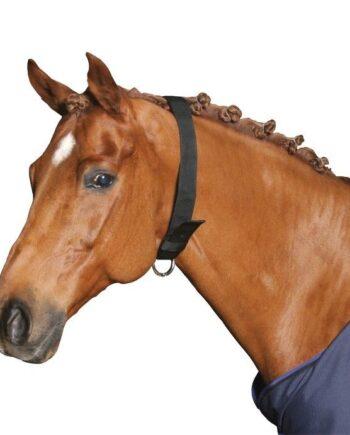 obroża kantar dla konia