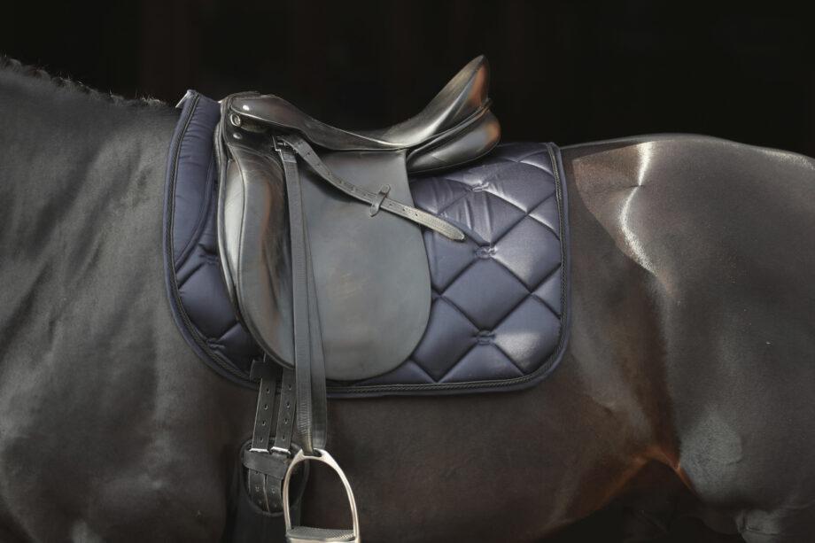czaprak dla konia Covallieor AW 2021